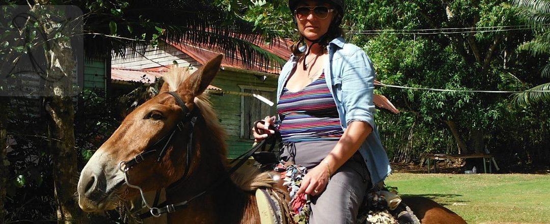 Exploring Tropical Jungles on Horseback